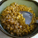 Cook a Soaked Whole Grain
